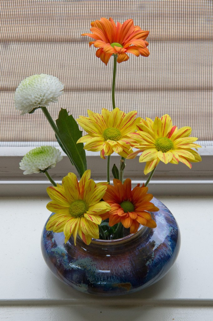 Several colorful flowers in a vase